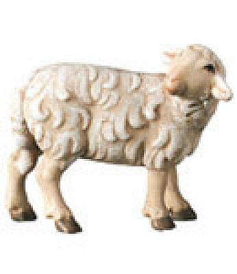 Schaf stehend nach hinten schauend (Betlehem Krippe)