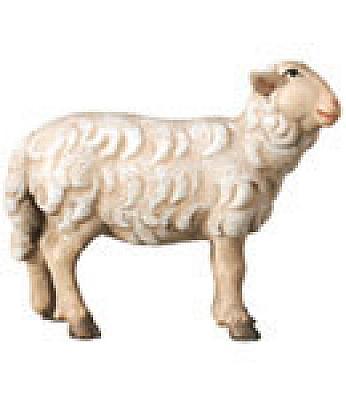 Schaf stehend (rechts, Betlehem Krippe)